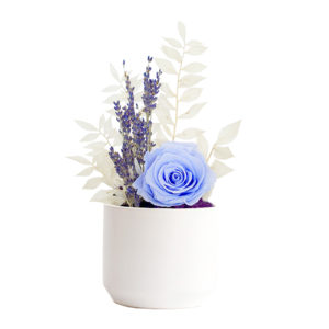 ceramic-vase-no-ribbon-selection