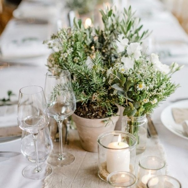 Easy & Affordable DIY Wedding Centerpiece - herrbs and potted plants