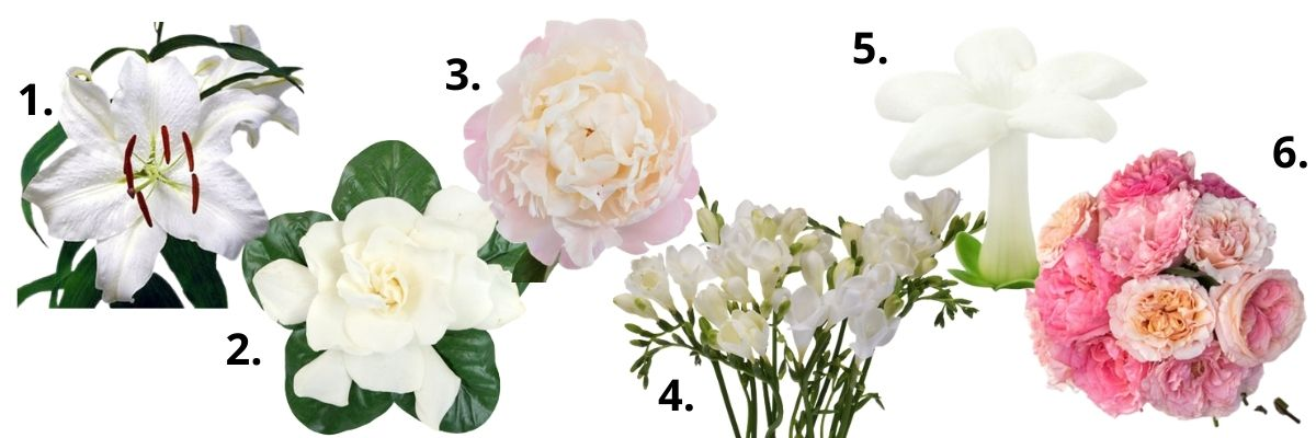 Why Wedding Flowers are Expensive - guides