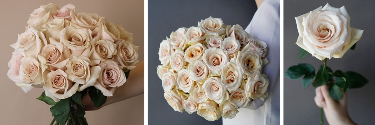 Why Wedding Flowers are Expensive - pearl roses