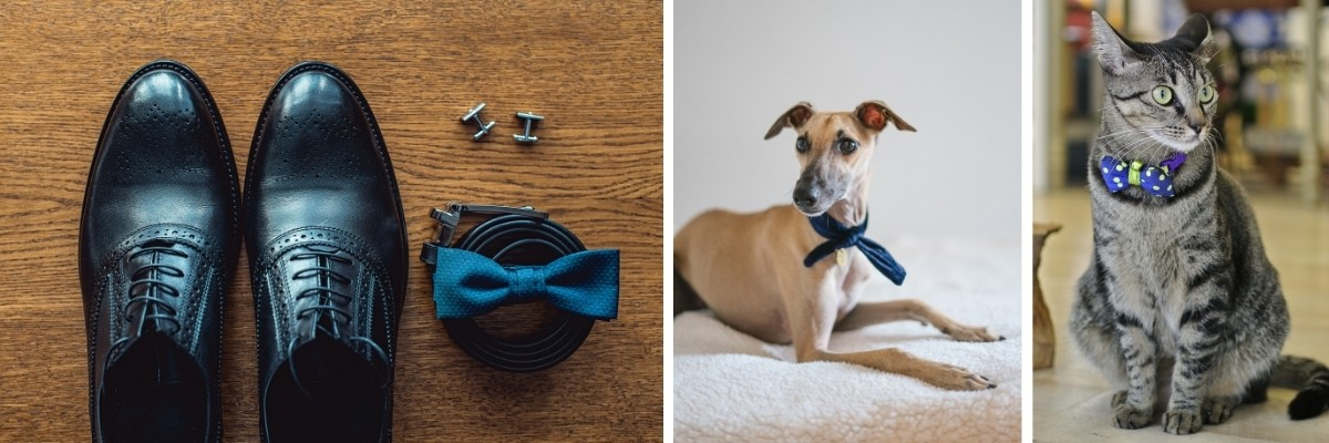 """""""Something Blue"""" Ideas For Your Wedding - accessories and pets"""