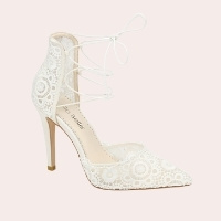 (2) Cameron Pointed Toe Lace Pump