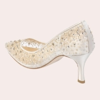 (7) Evelyn Pointed Toe Pump