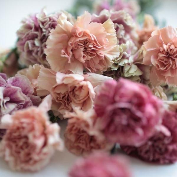 Affordable Wedding Bouquet Designs - antique carnations