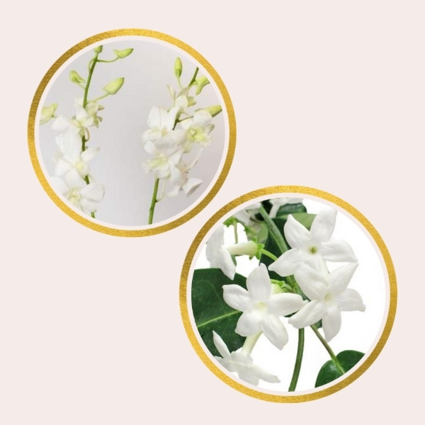 Affordable Alternatives For Pricy Flowers - dendrobium orchids and stephanotis