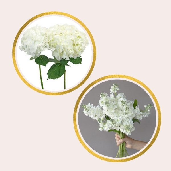 Affordable Alternatives For Pricy Flowers - hydrangea and stock