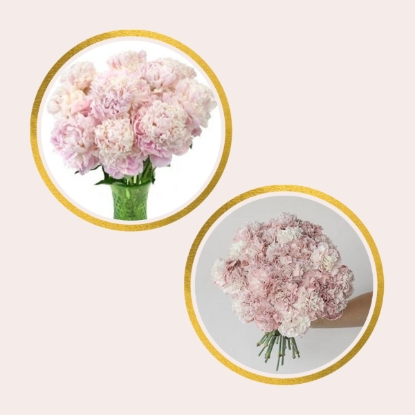 Affordable Alternatives For Pricy Flowers - carnations and peonies